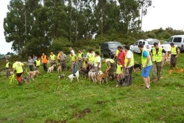 II Campeonato de Perros de Rastro Atraillados sobre Rastro de Jabalí