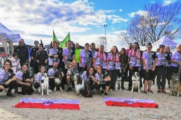 VI Campeonato de España de Agility